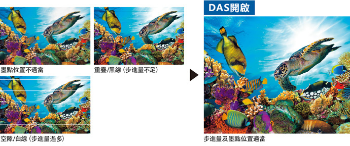 DAS(Dot Adjustment System)
